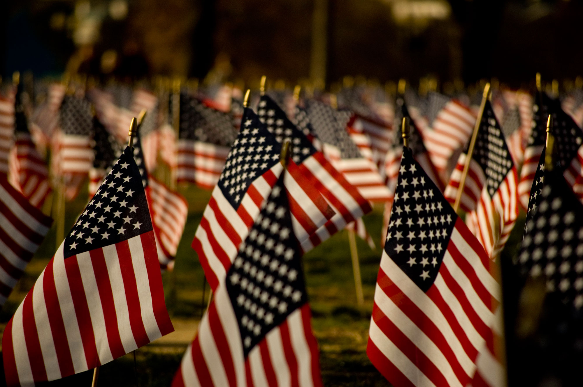 Image of American Flags On Graves